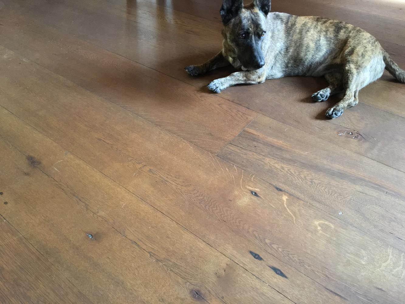 Vintage Timberworks Showroom Reclaimed Wide Plank White Oak Flooring Long Lengths