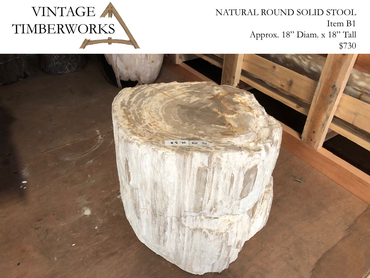 Natural Edge Petrified Wood Stool White & Petrified Wood - Vintage Timberworks islam-shia.org